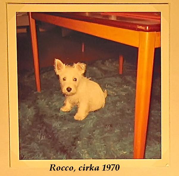 Fotoalbum-1-031-Rocco-asfl-1[1]